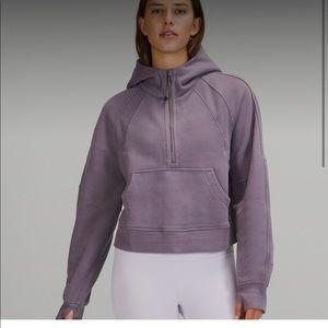 lavender dust xl/xxl NWT scuba oversized half zip
